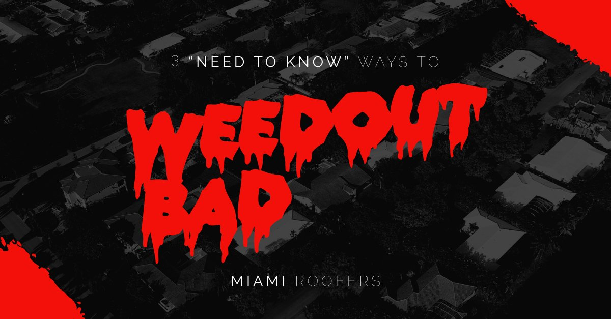 3 Need-to-Know Ways to Weed Out Bad Miami Roofers