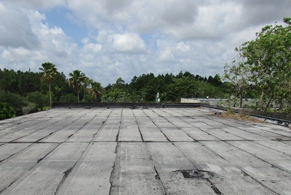 Roofing the Miami Zoo