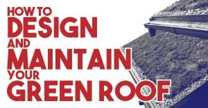 How To Design And Maintain Your Green Roof