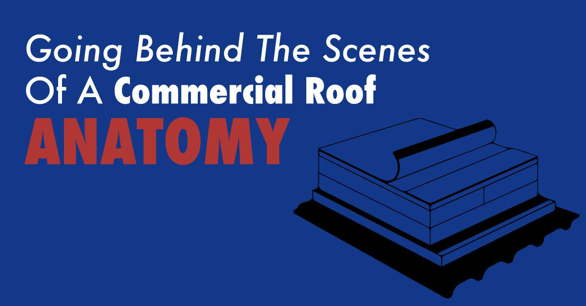 Going Behind The Scenes Of Commercial Roof Anatomy