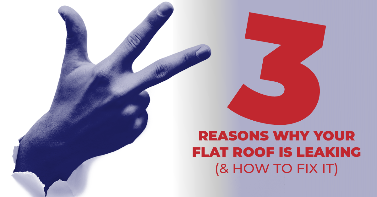 3 Reasons Why Your Flat Roof Is Leaking (& How To Fix It)