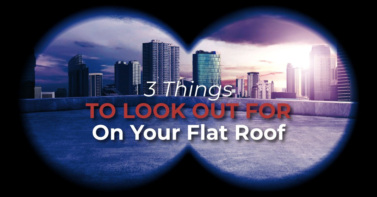 3 Things To Look Out For On Your Flat Roof
